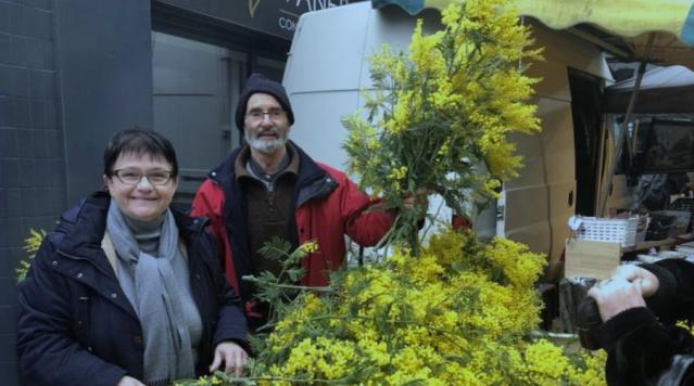 ISM vente mimosa Lavalette